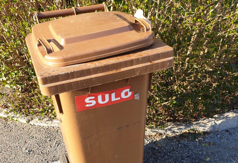 Was Tun Gegen Maden In Der Mülltonne