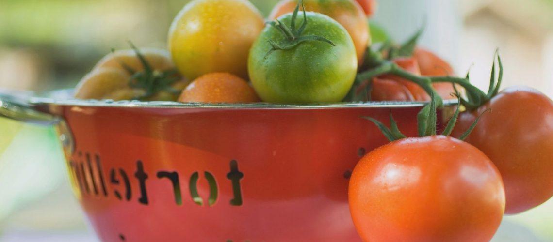 tomaten obst frucht