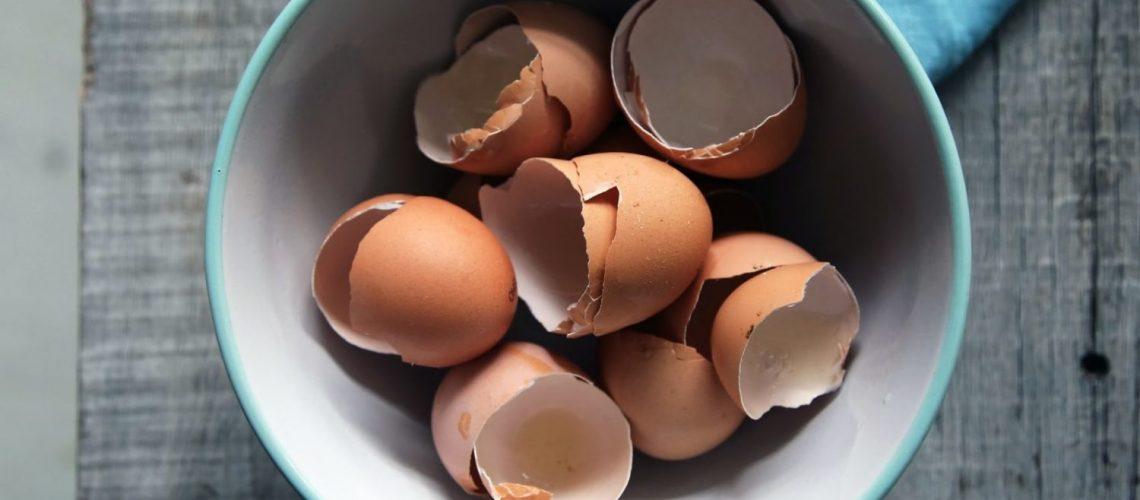 wie_eierschalen_richtig_entsorgen_up